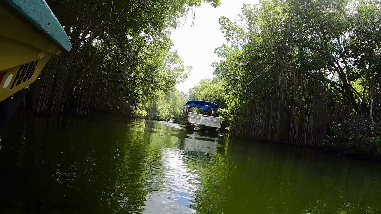 Black River Safari 2