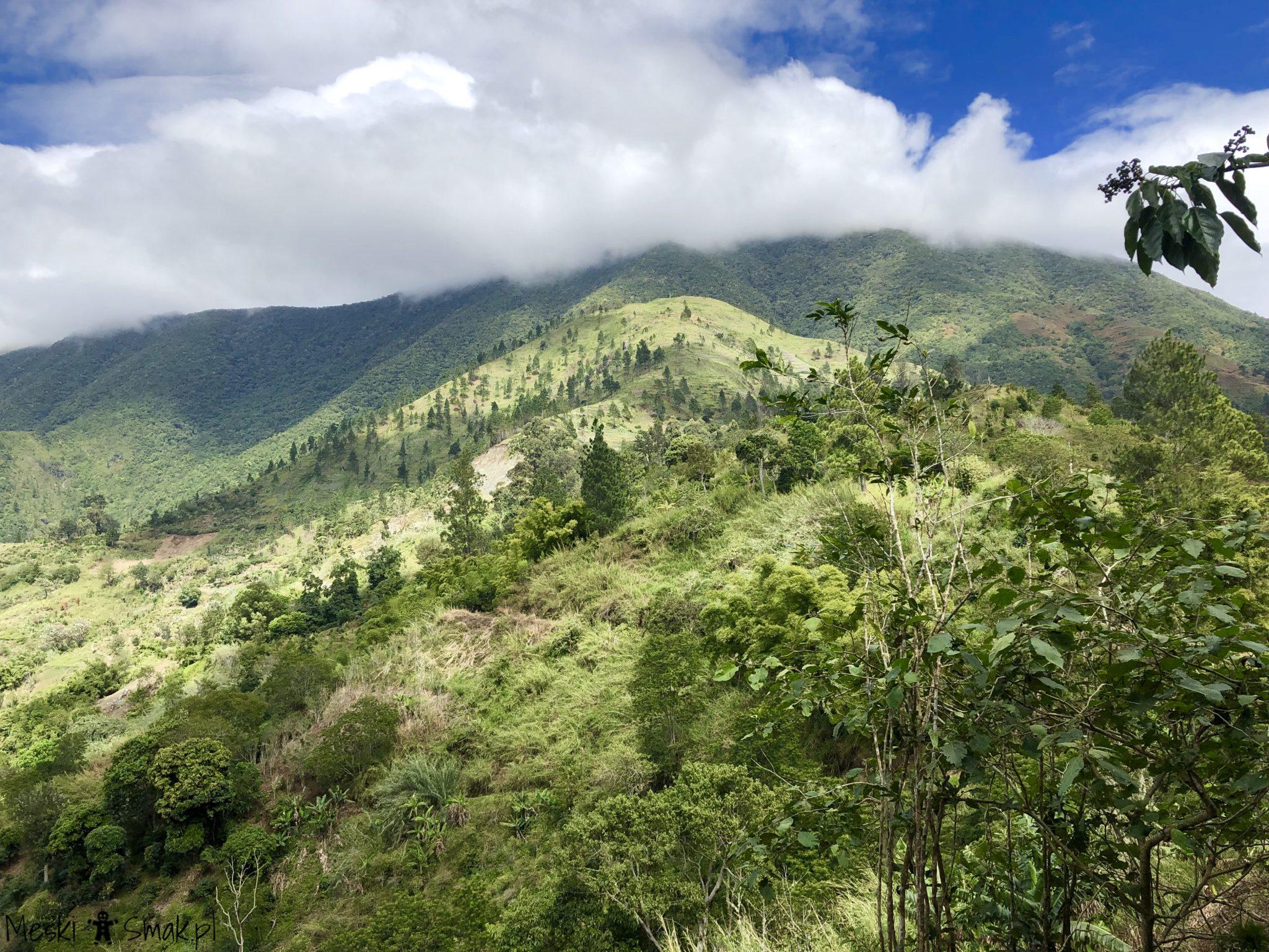 jamajka na własną rękę_Blue Mountain Góry Błękitne