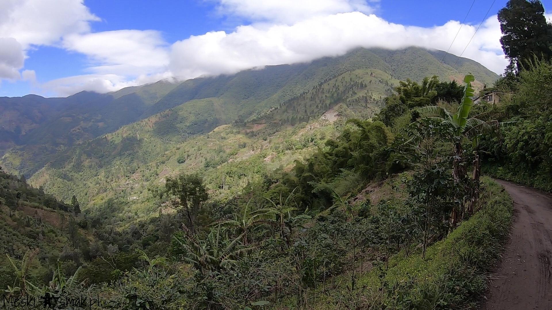 jamajka na własną rękę_Blue Mountains Góry Błękitne 9