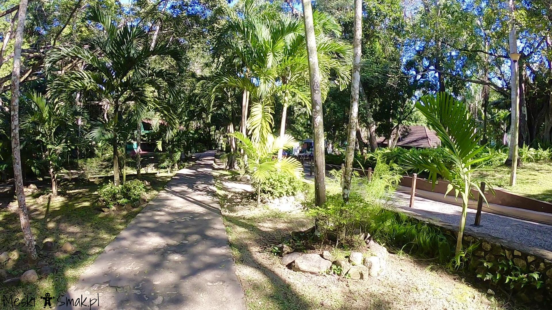 jamajka wycieczki_Dunn`s River Falls 3