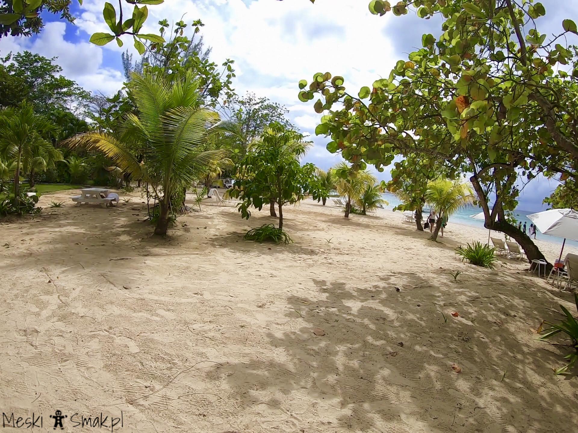 jamajka na własną rękę_Seven Mile Beach 3