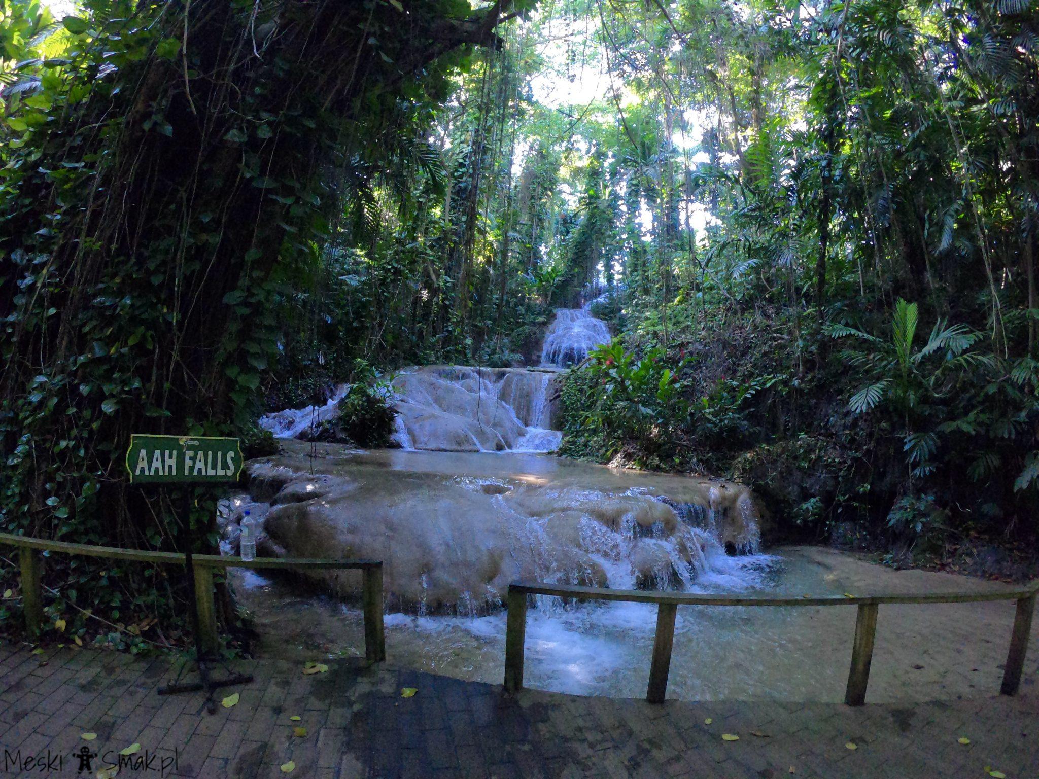 jamajka relacja_The Turtle River Falls & Gardens 3