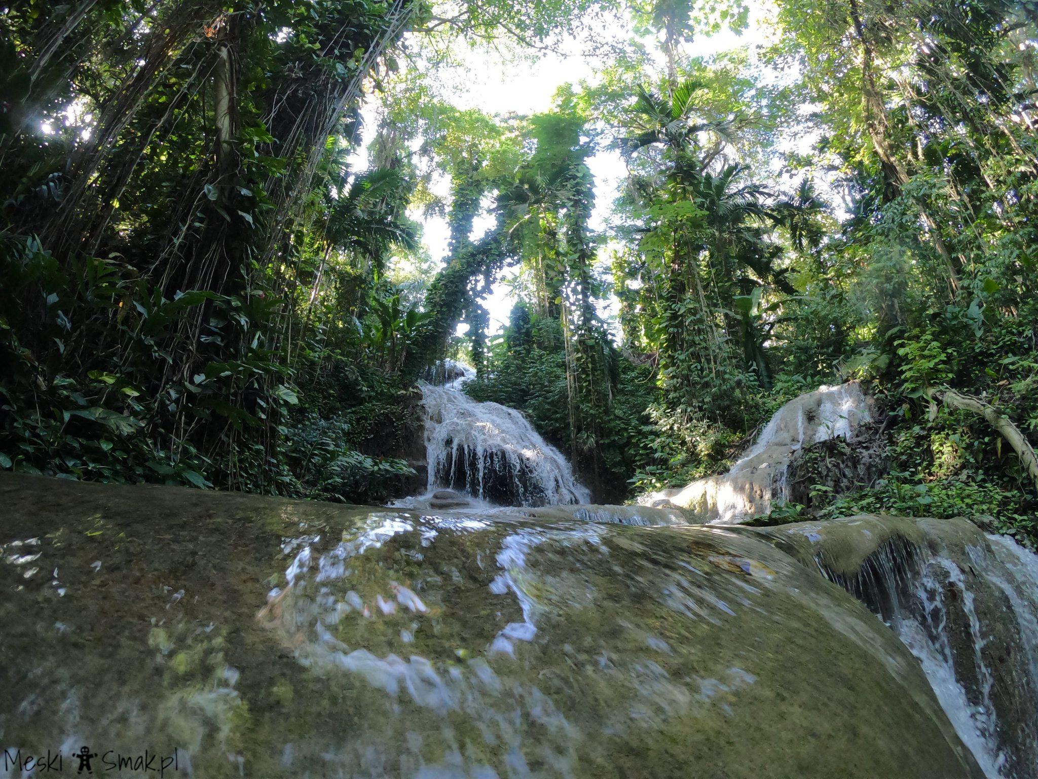 jamajka wakacje_The Turtle River Falls & Gardens 4