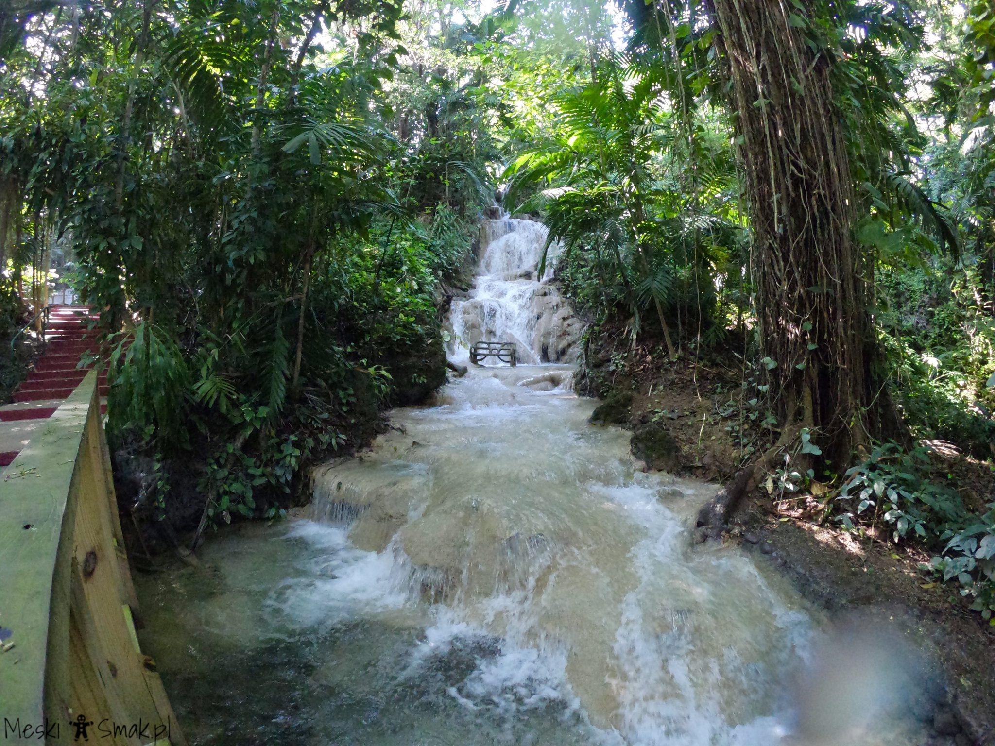 karaiby wakacje_The Turtle River Falls & Gardens 5