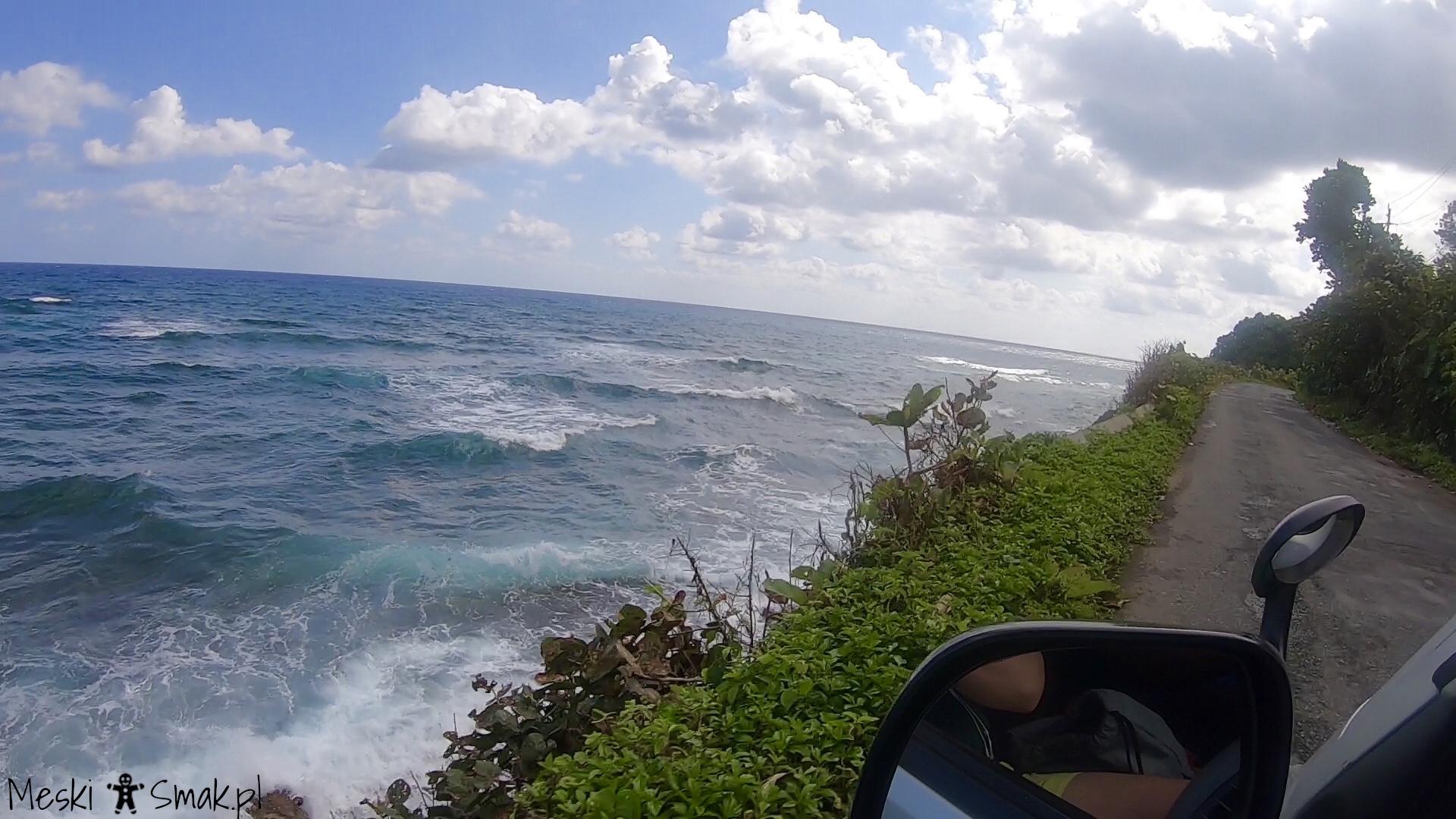jamajka atrakcje_W drodze z Ocho Rios do Port Antonio
