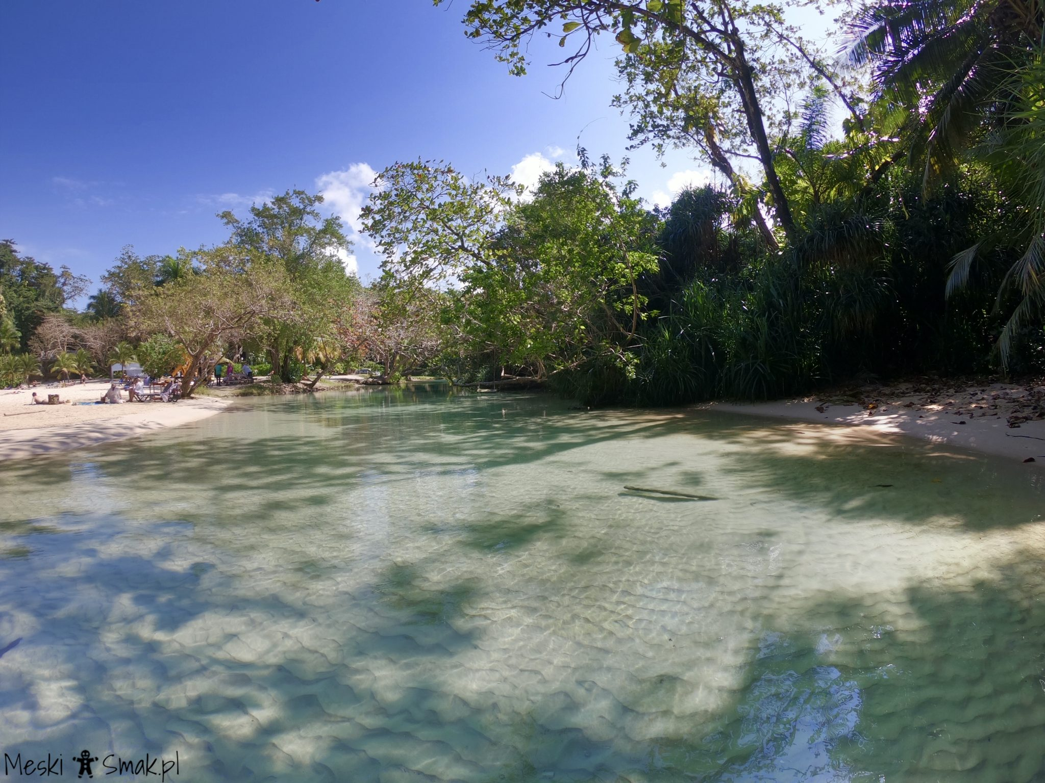 Jamajka wakacje 17