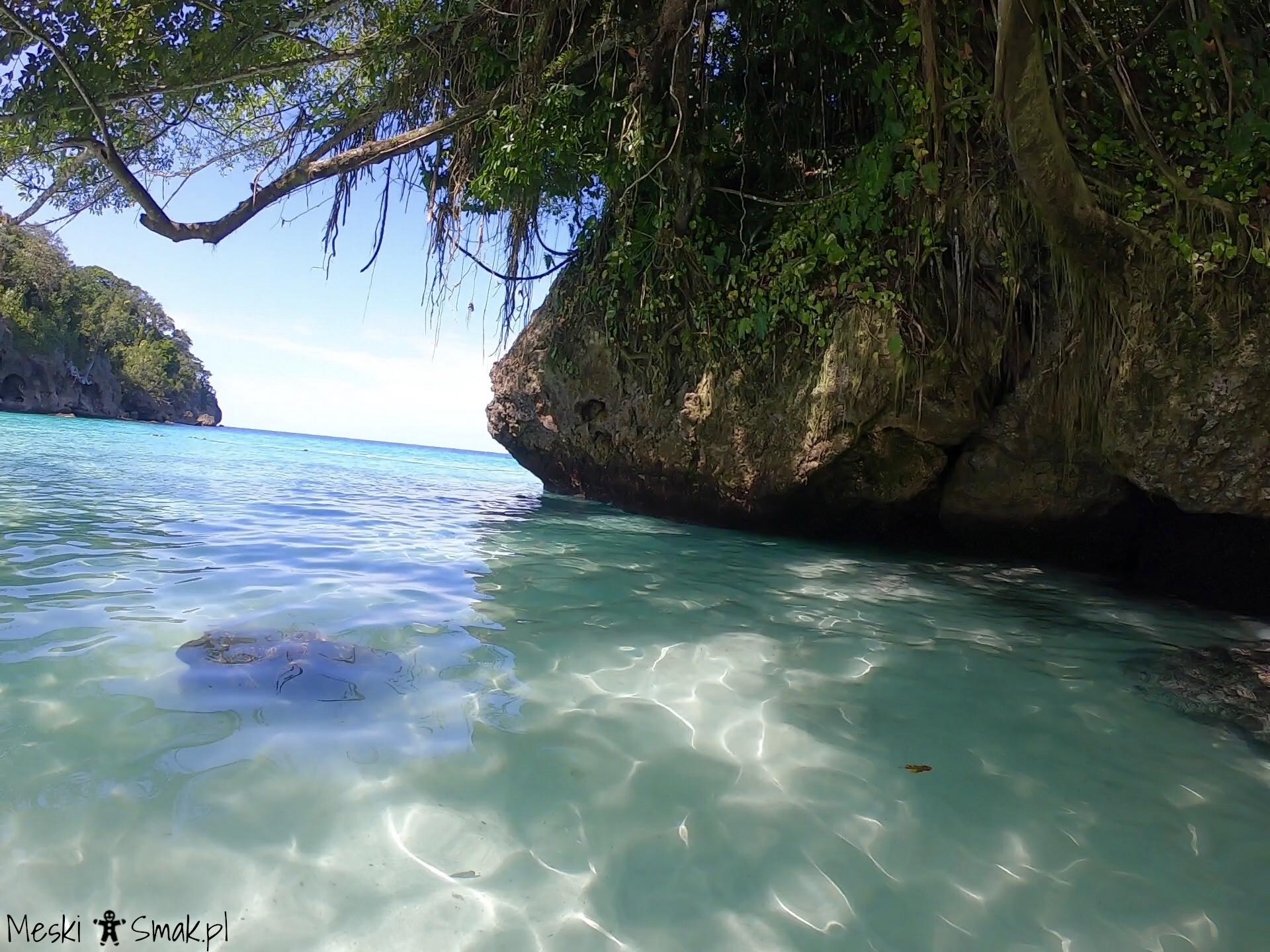 Jamajka wakacje 8
