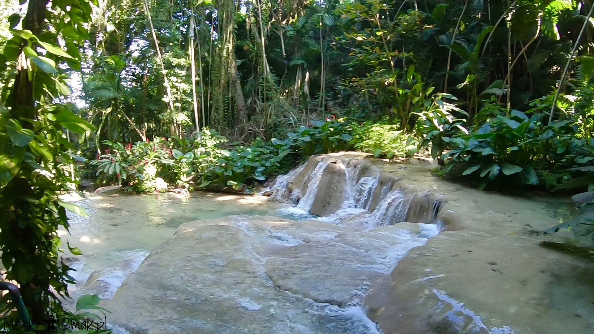 Turtle River Falls & Gardens 13