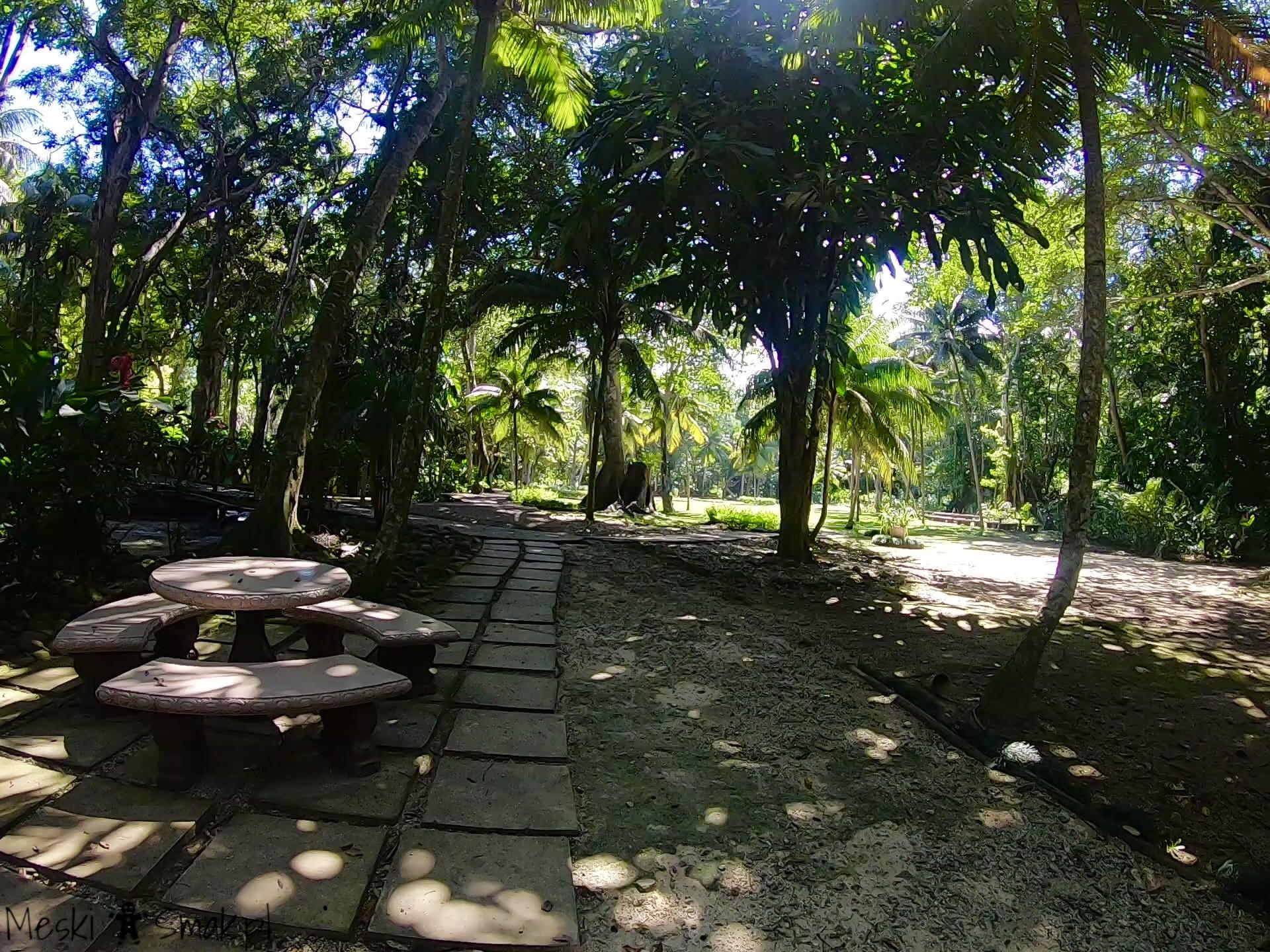 Wakacje i wycieczki Jamajka wszystko o Dunn`s River Falls 16
