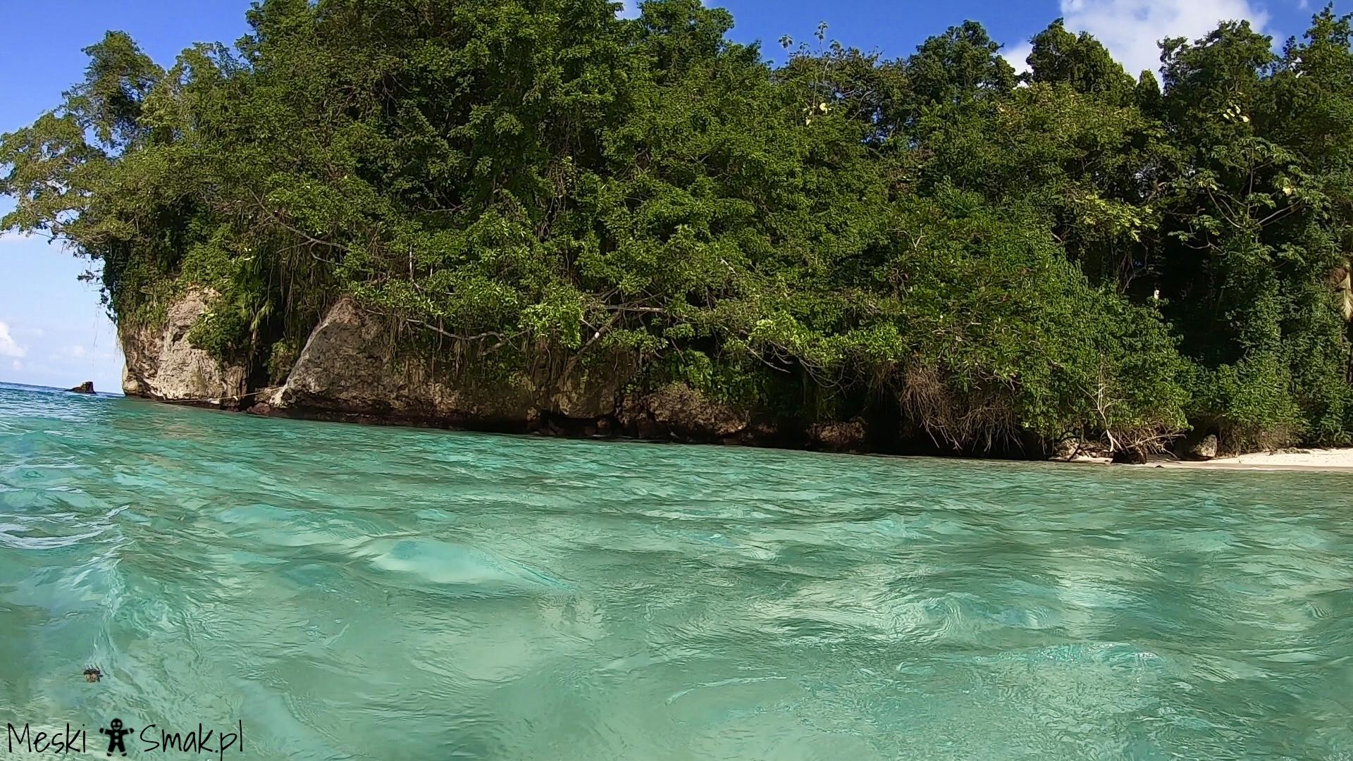 Wakacje i wycieczki Jamajka wszystko o plaża Frenchman`s Cove 5