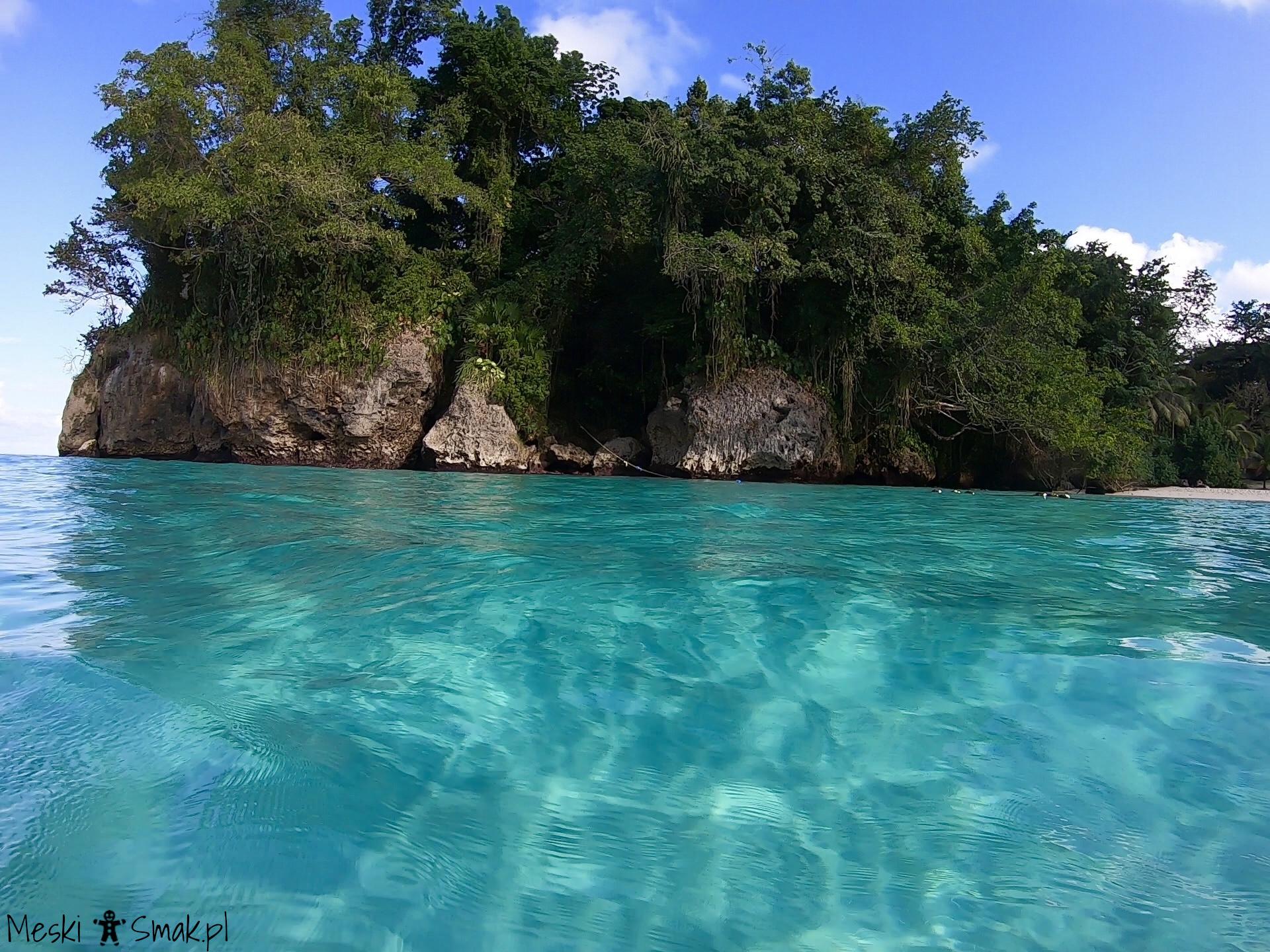 Wakacje i wycieczki Jamajka wszystko o plaża Frenchman`s Cove 6