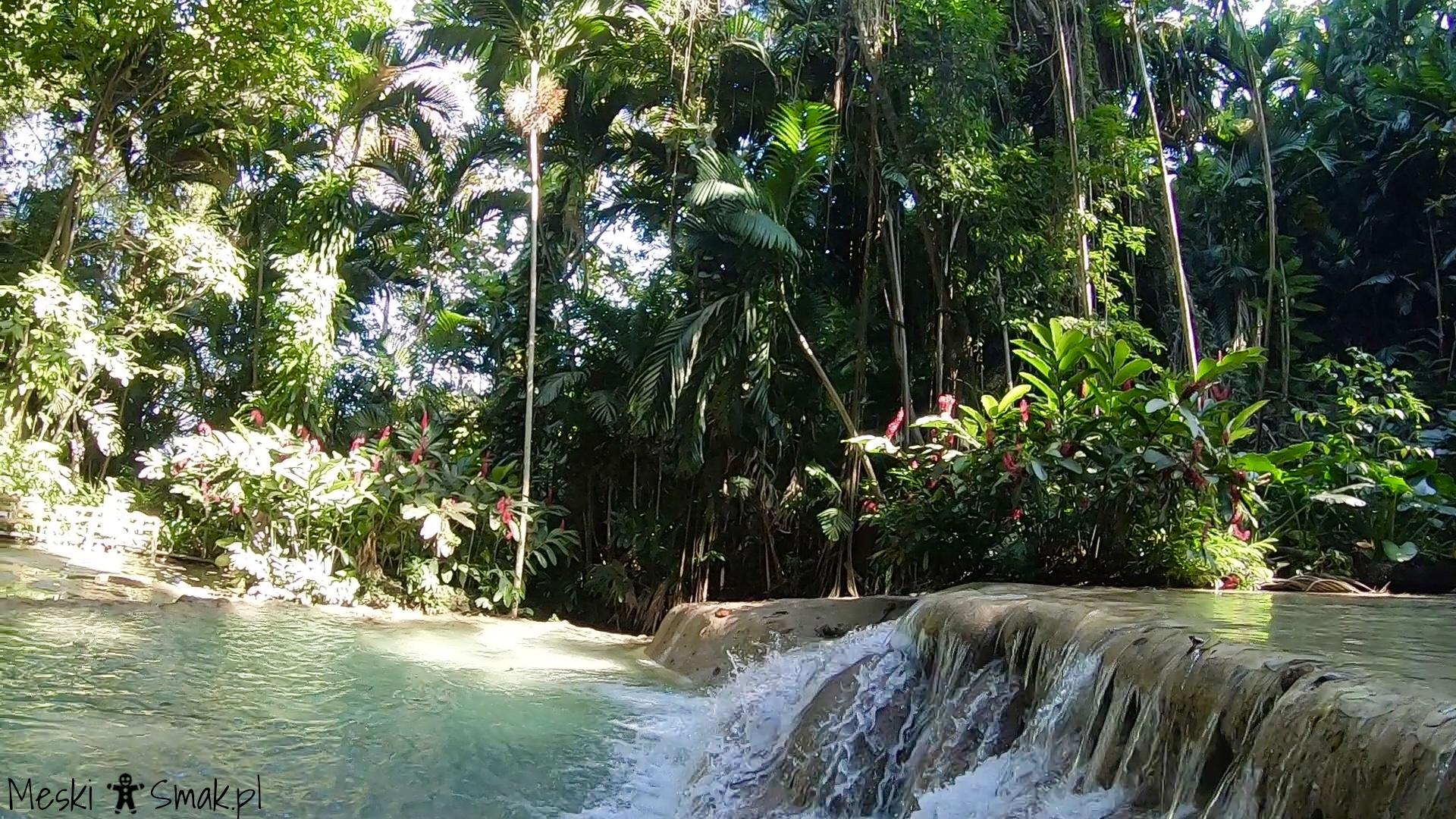 Wakacje i wycieczki Jamajka_The Turtle River Falls & Gardens 10