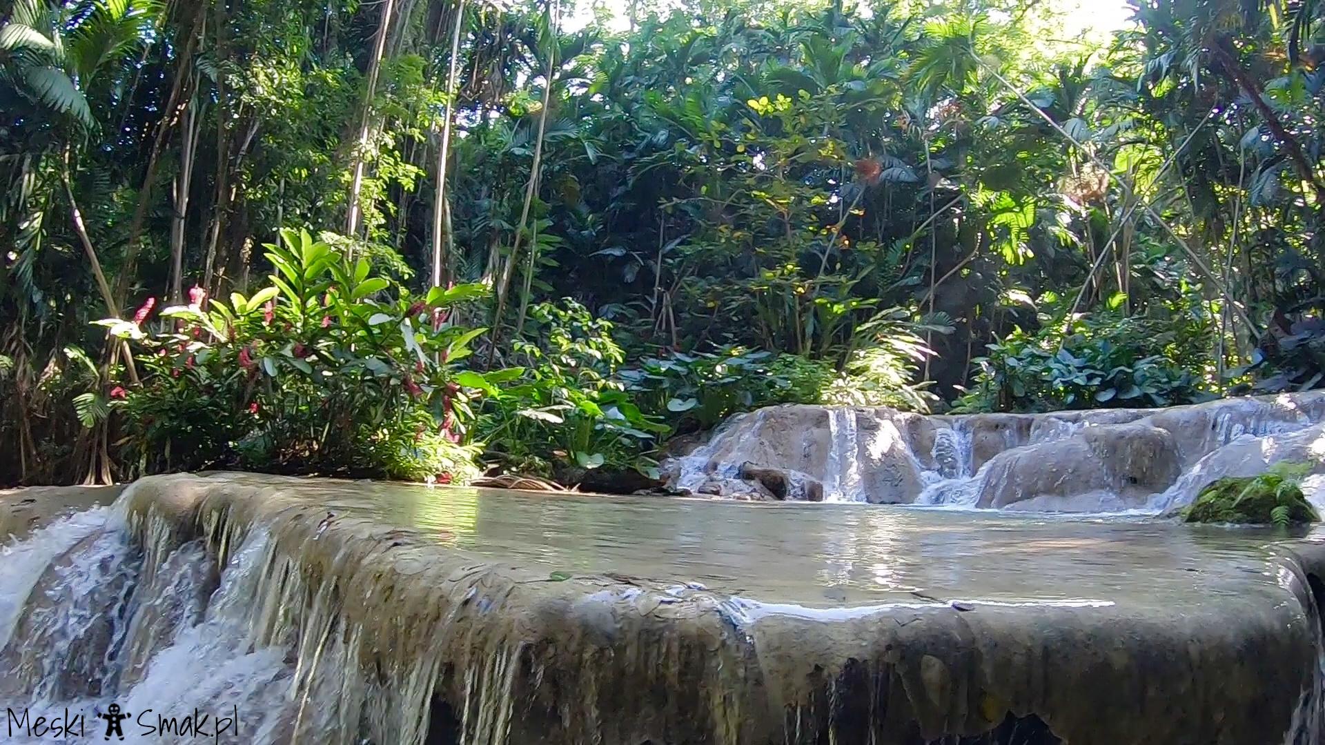 Wakacje i wycieczki Jamajka_The Turtle River Falls & Gardens 13