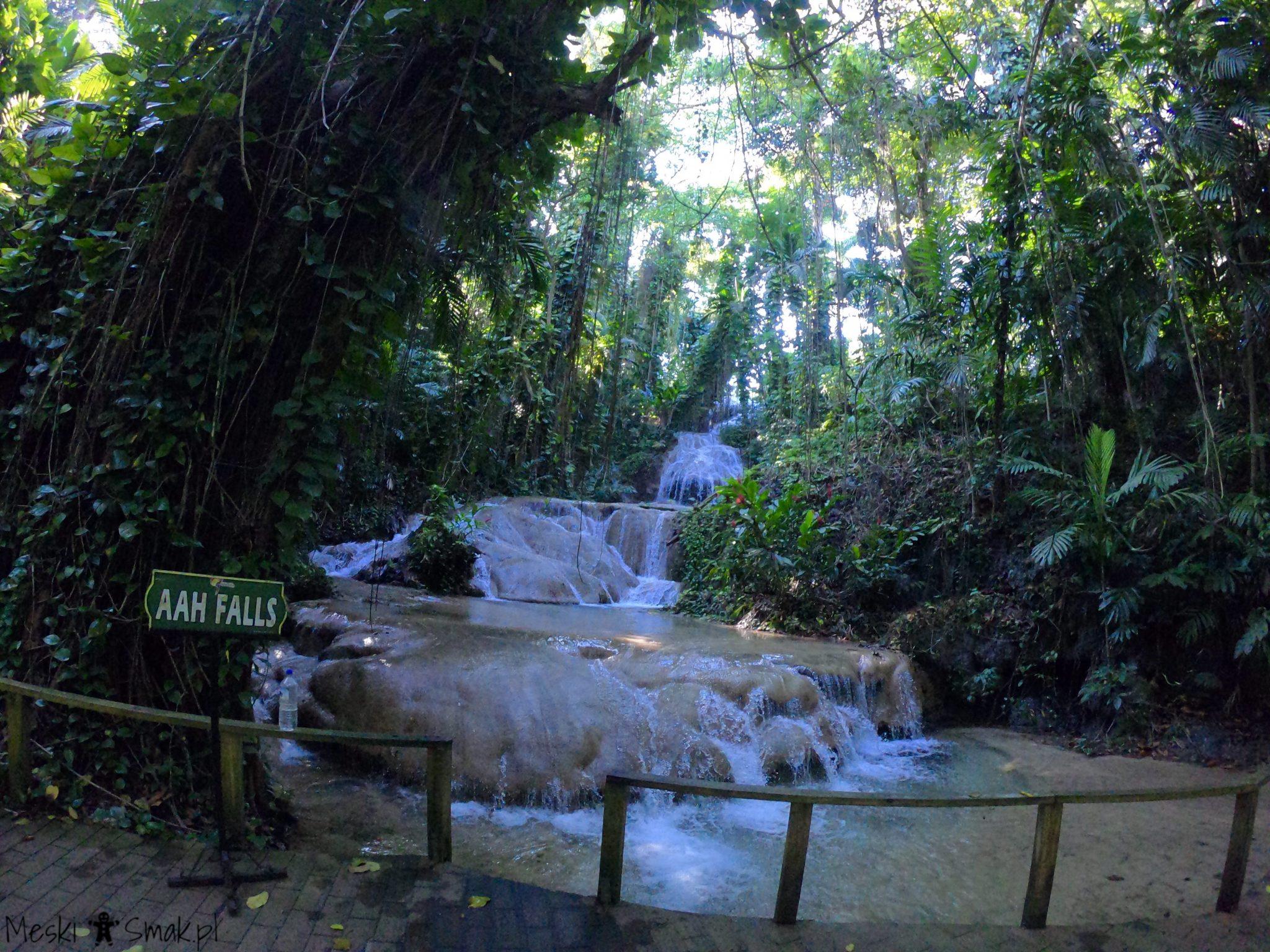 Wakacje i wycieczki Jamajka_The Turtle River Falls & Gardens 3