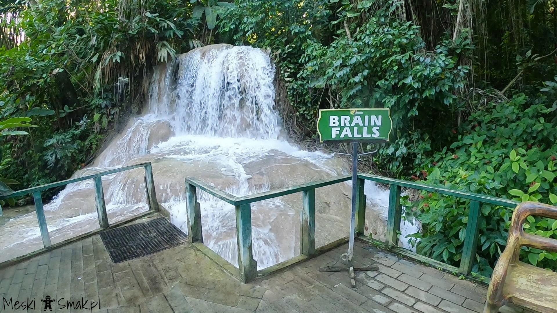 Wakacje i wycieczki Jamajka_The Turtle River Falls & Gardens 5