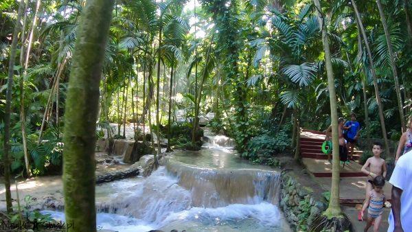 Wakacje i wycieczki Jamajka: The Turtle River Falls & Gardens