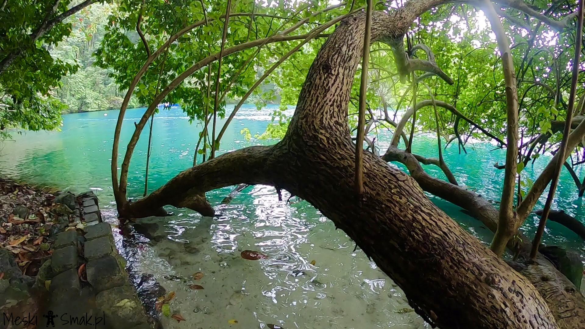 Wakacje i wycieczki Jamajka_wszystko o błękitna laguna Blue Lagoon 3