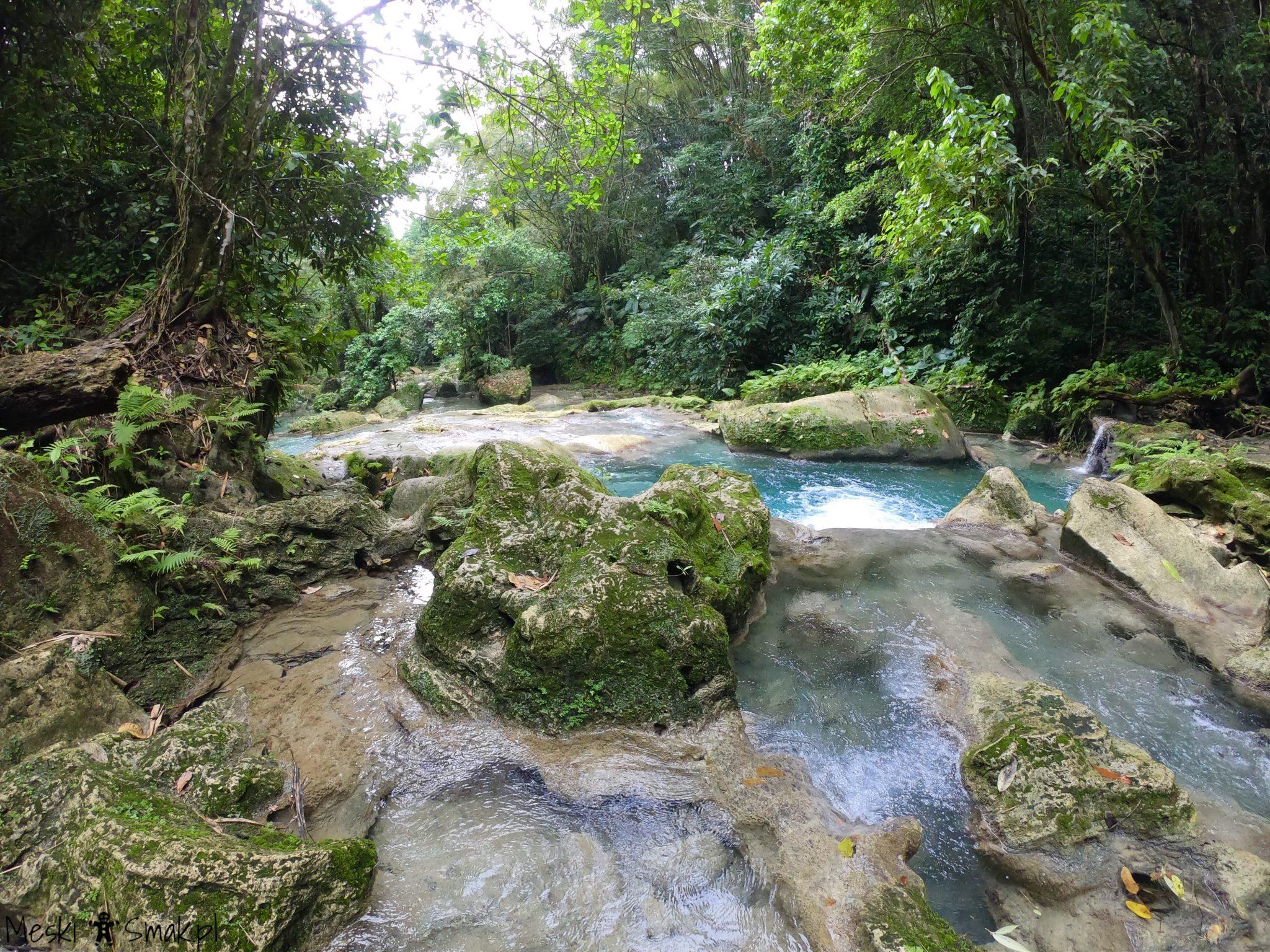 Wodospady Reach Falls 8