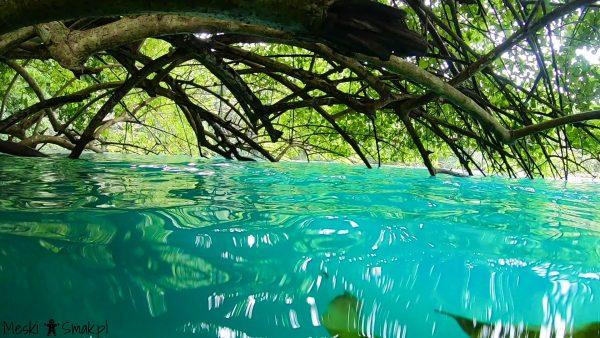 Wakacje i wycieczki Jamajka: wszystko o błękitna laguna Blue Lagoon
