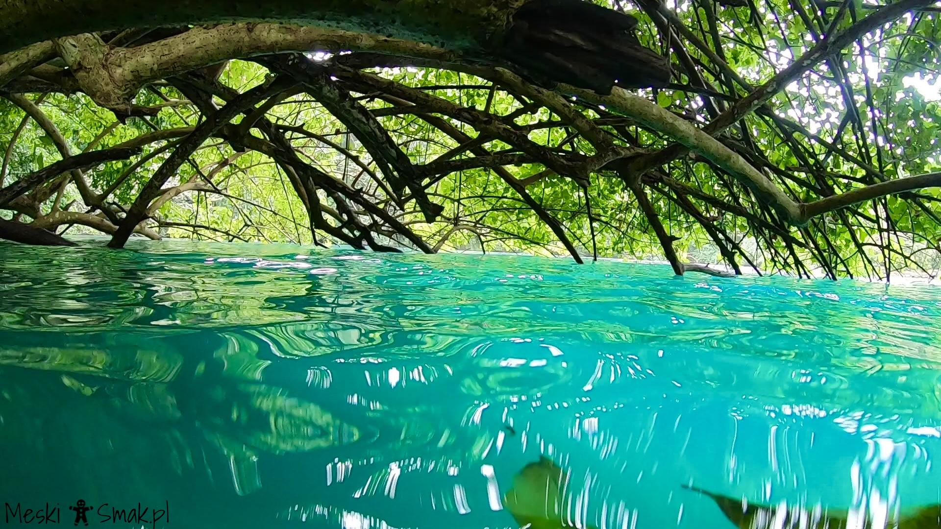 błękitna laguna Blue Lagoon