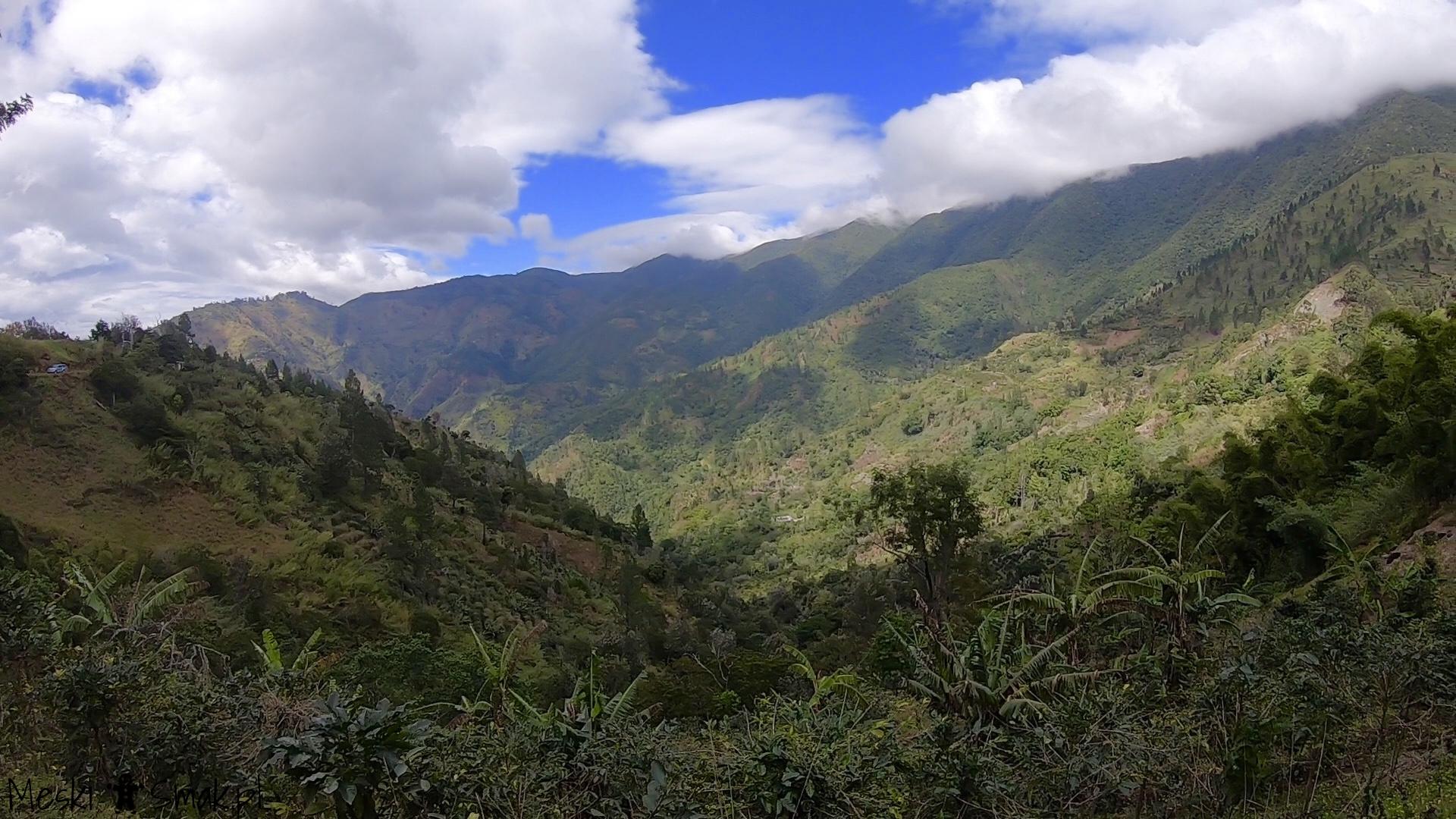 Wakacje i wycieczki Jamajka_wszystko o Góry Błękitne Blue Mountains 11