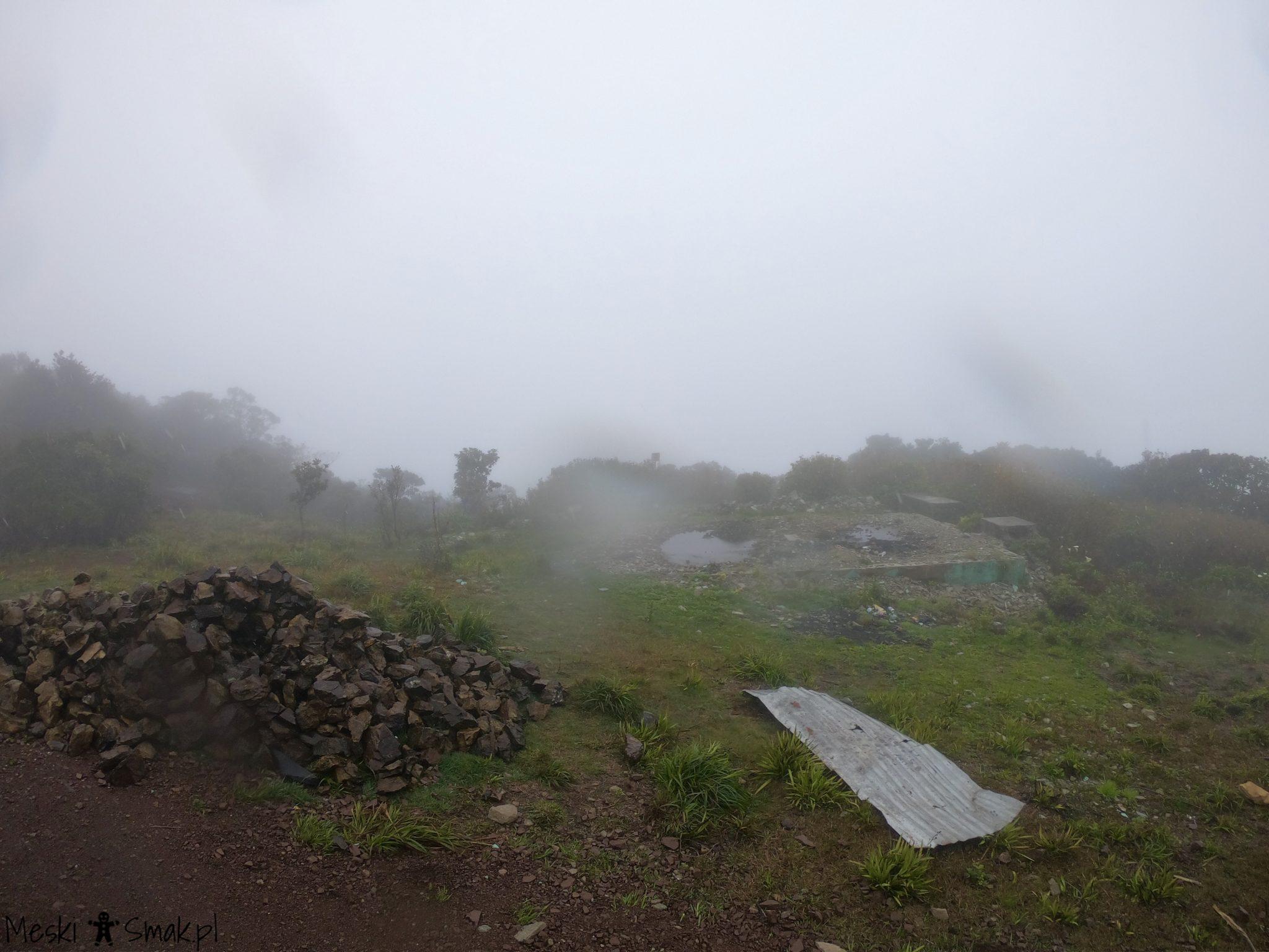 Wakacje i wycieczki Jamajka_wszystko o Góry Błękitne Blue Mountains 18