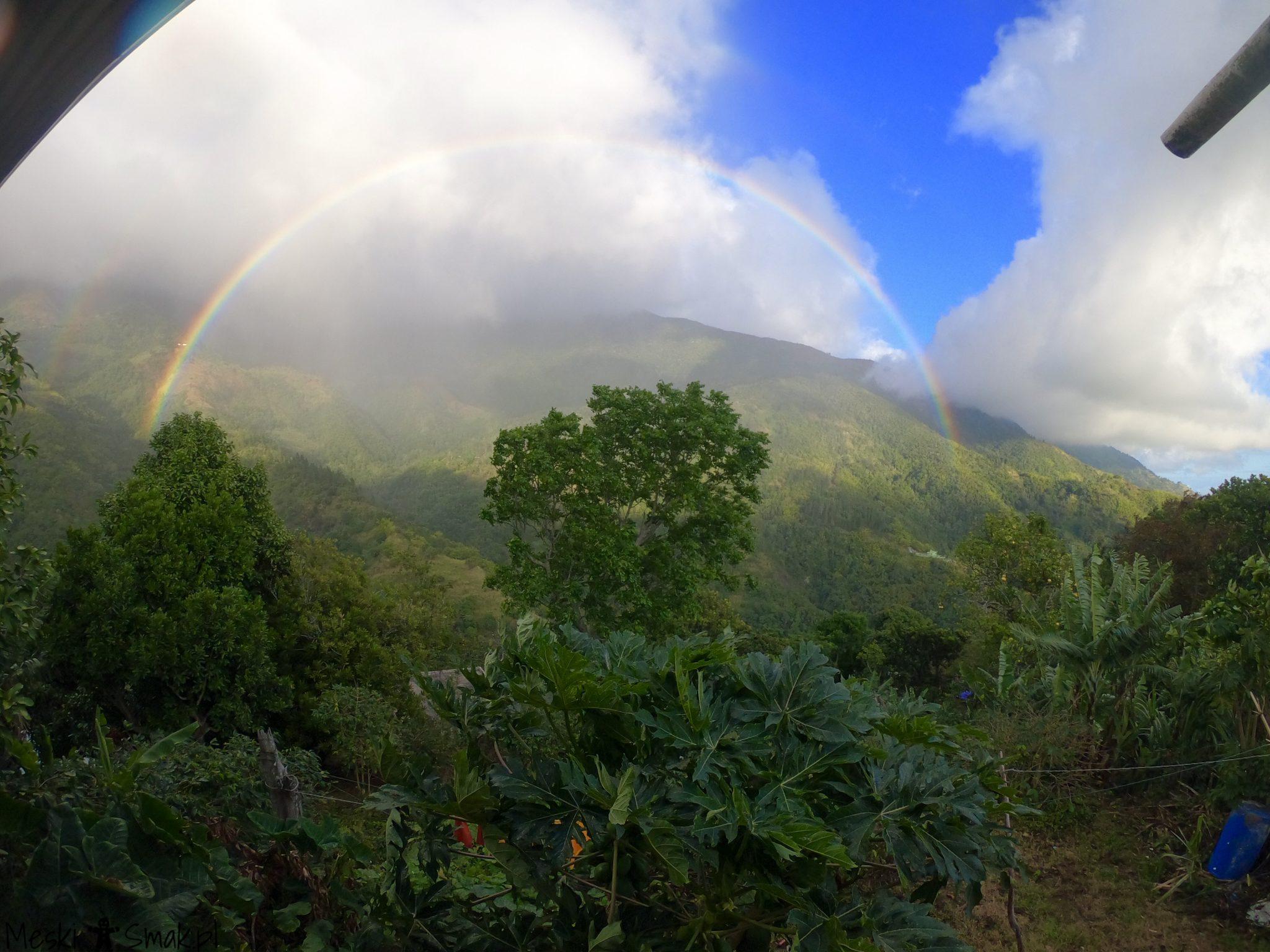 Wakacje i wycieczki Jamajka_wszystko o Góry Błękitne Blue Mountains 2