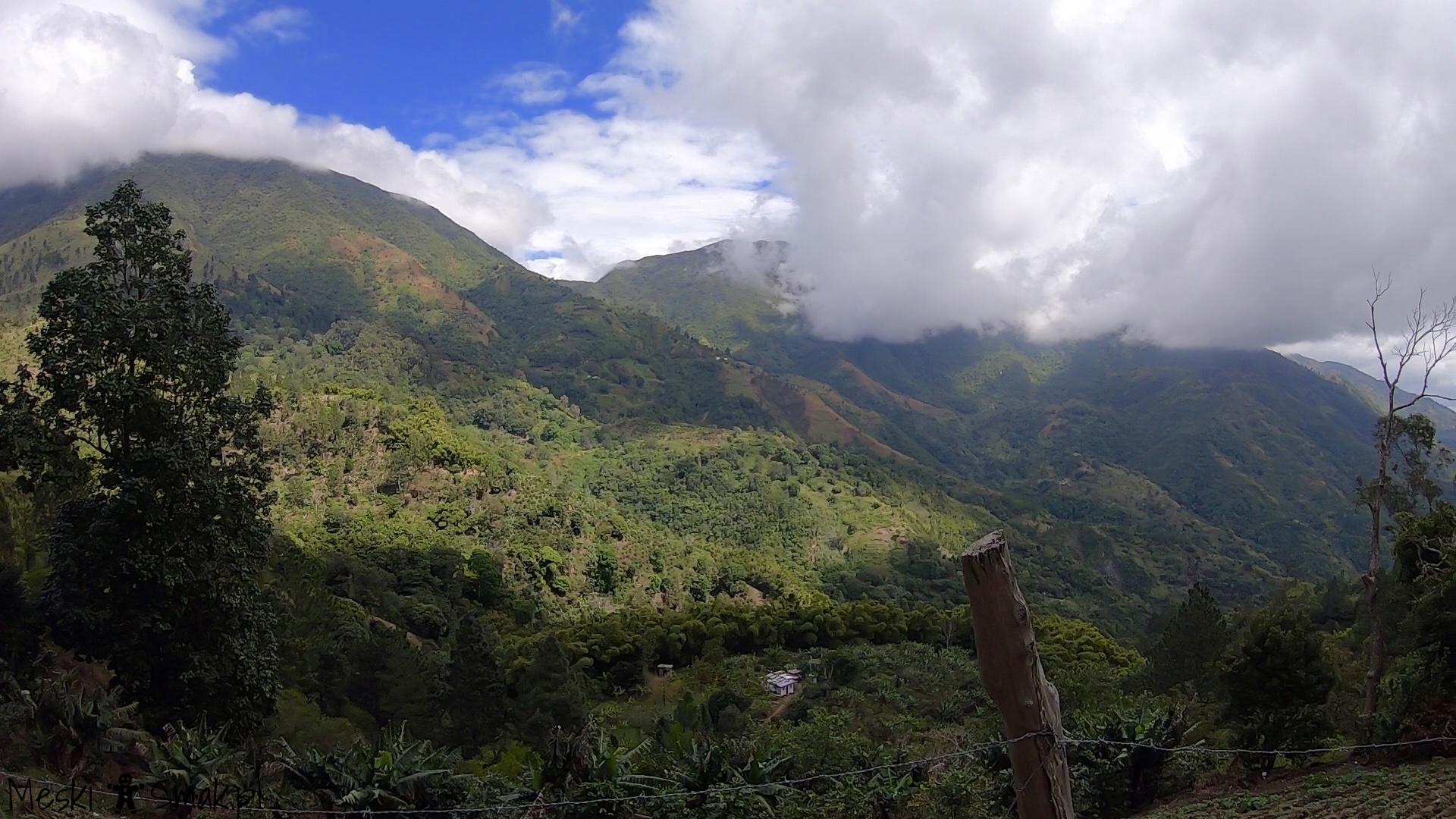 Wakacje i wycieczki Jamajka_wszystko o Góry Błękitne Blue Mountains 20