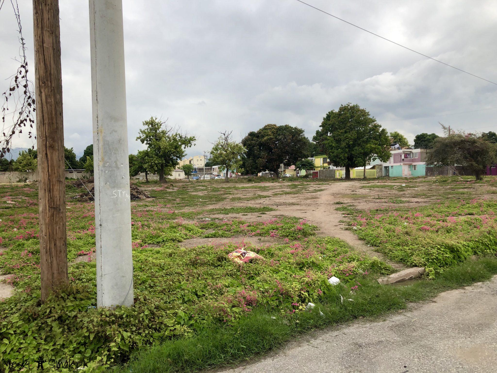 Wakacje i wycieczki Jamajka_wszystko o Trench Town Culture Yard 4