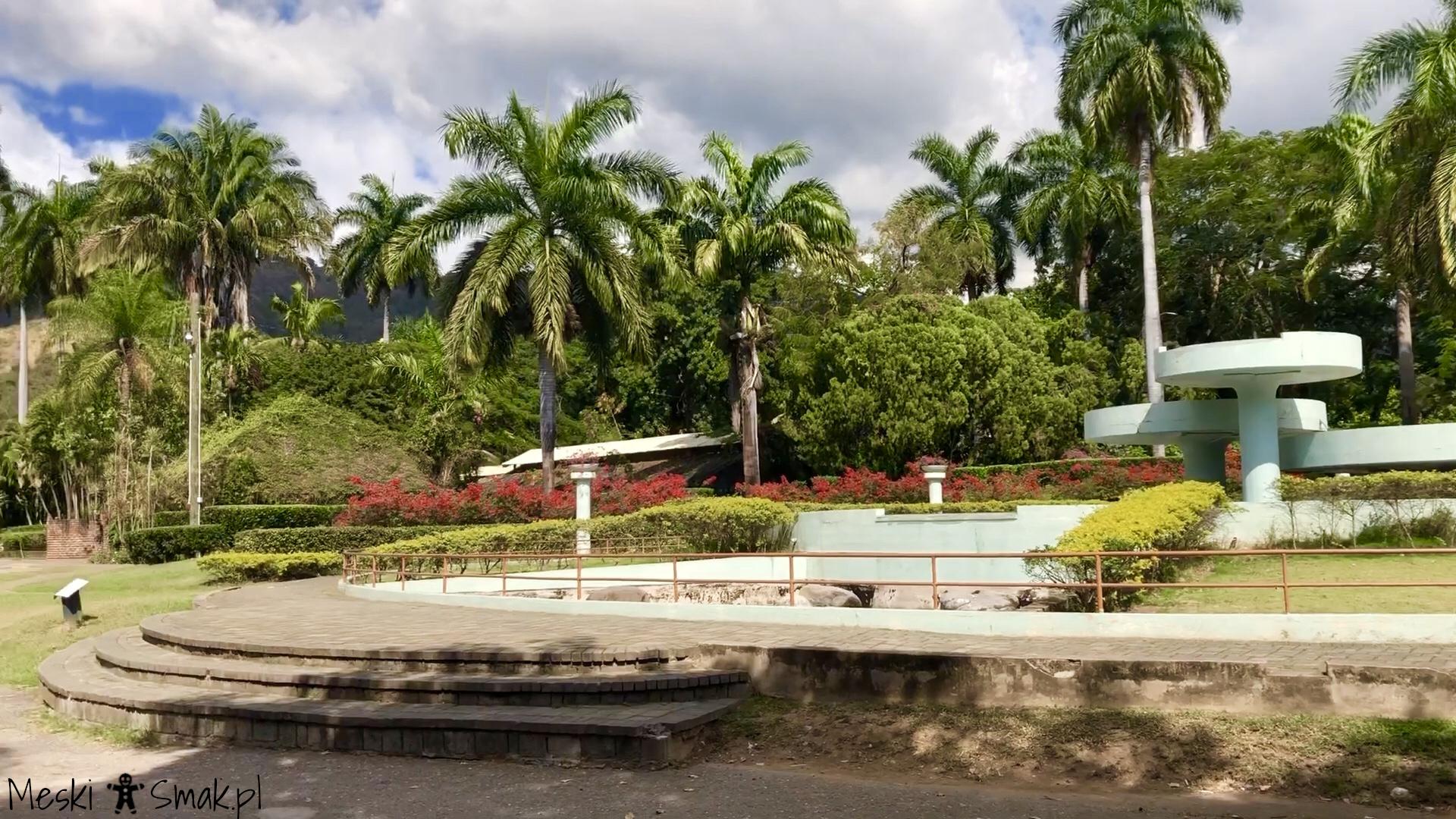 Wakacje i wycieczki Jamajka_wszystko o ogrodach Hope Gardens 3