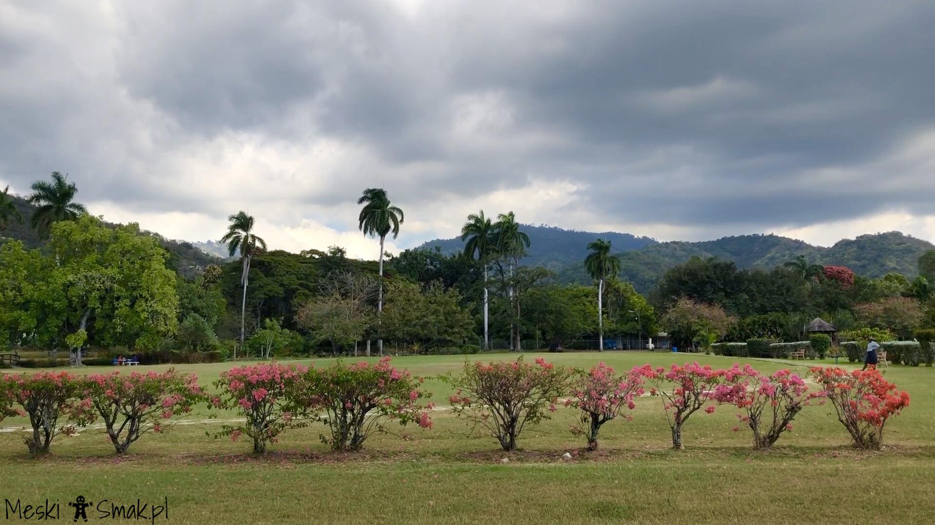 Wakacje i wycieczki Jamajka_wszystko o ogrodach Hope Gardens 4