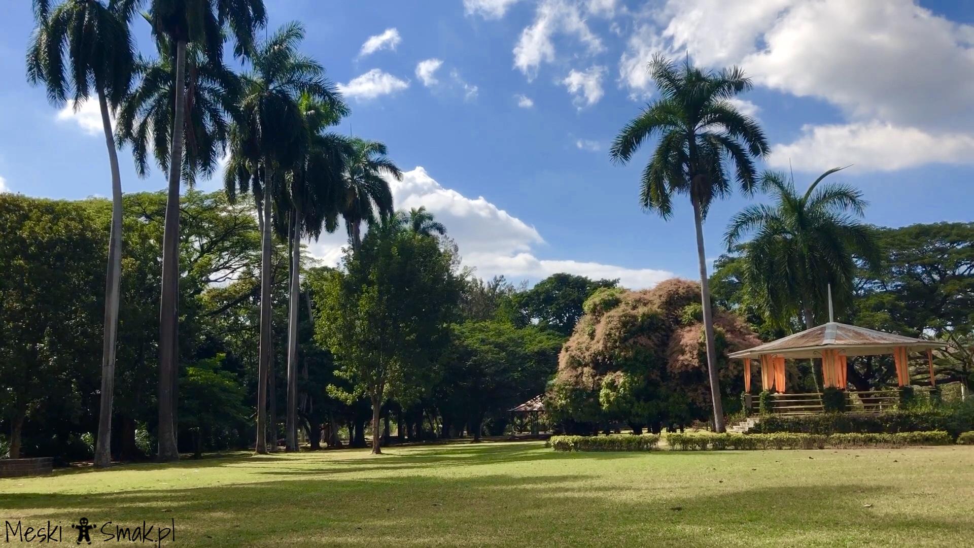 Wakacje i wycieczki Jamajka_wszystko o ogrodach Hope Gardens 9