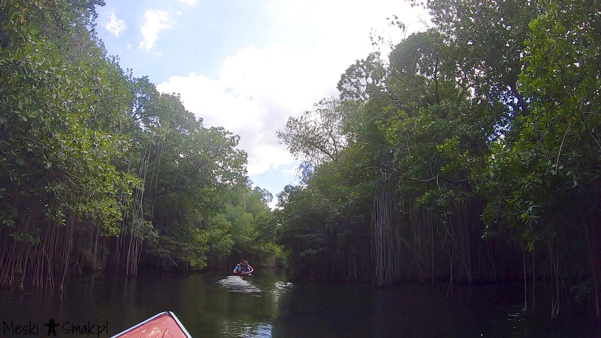 Wakacje i wycieczki Jamajka_wszystko o Black River Safari 12