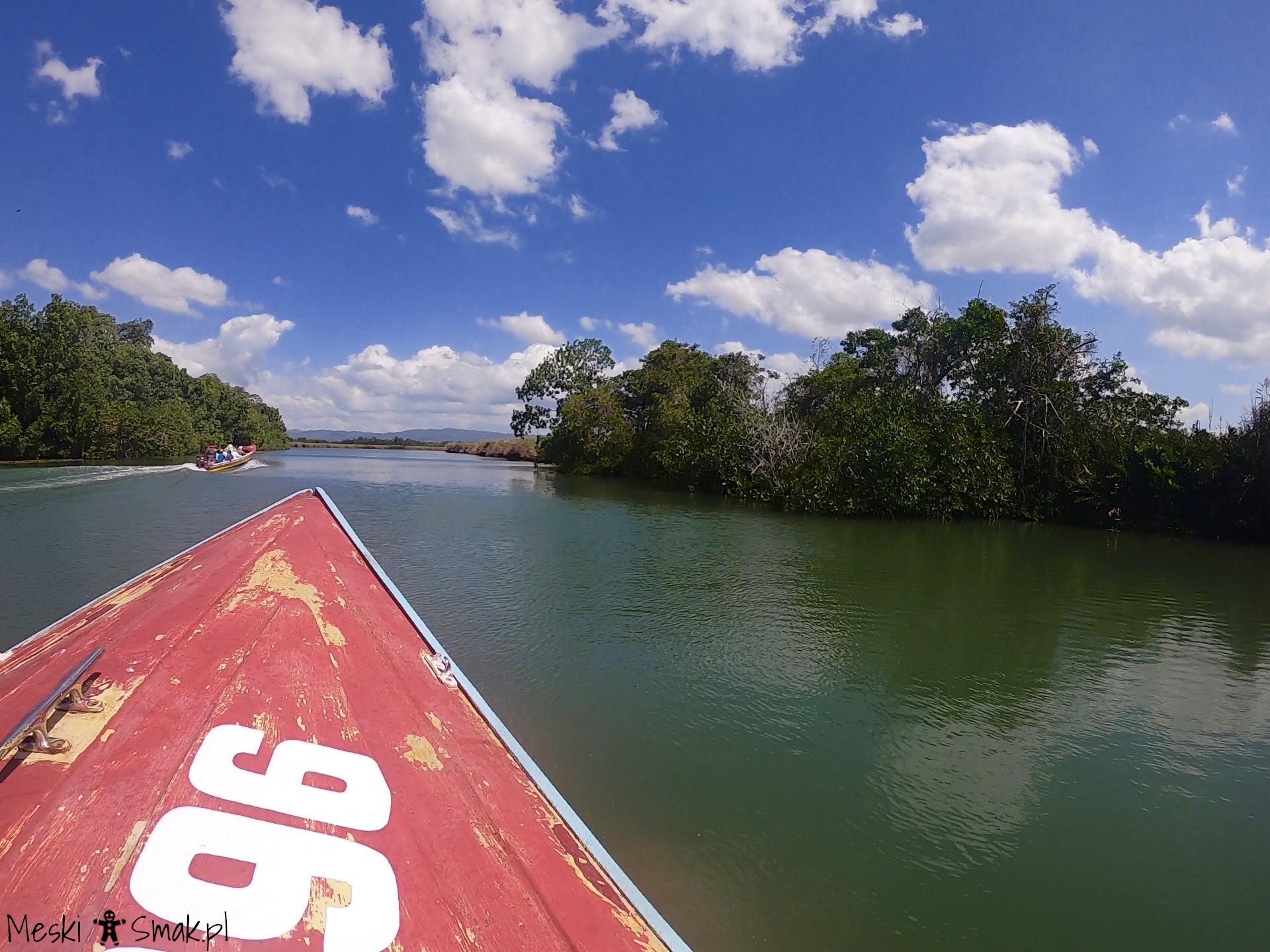 Wakacje i wycieczki Jamajka_wszystko o Black River Safari 6
