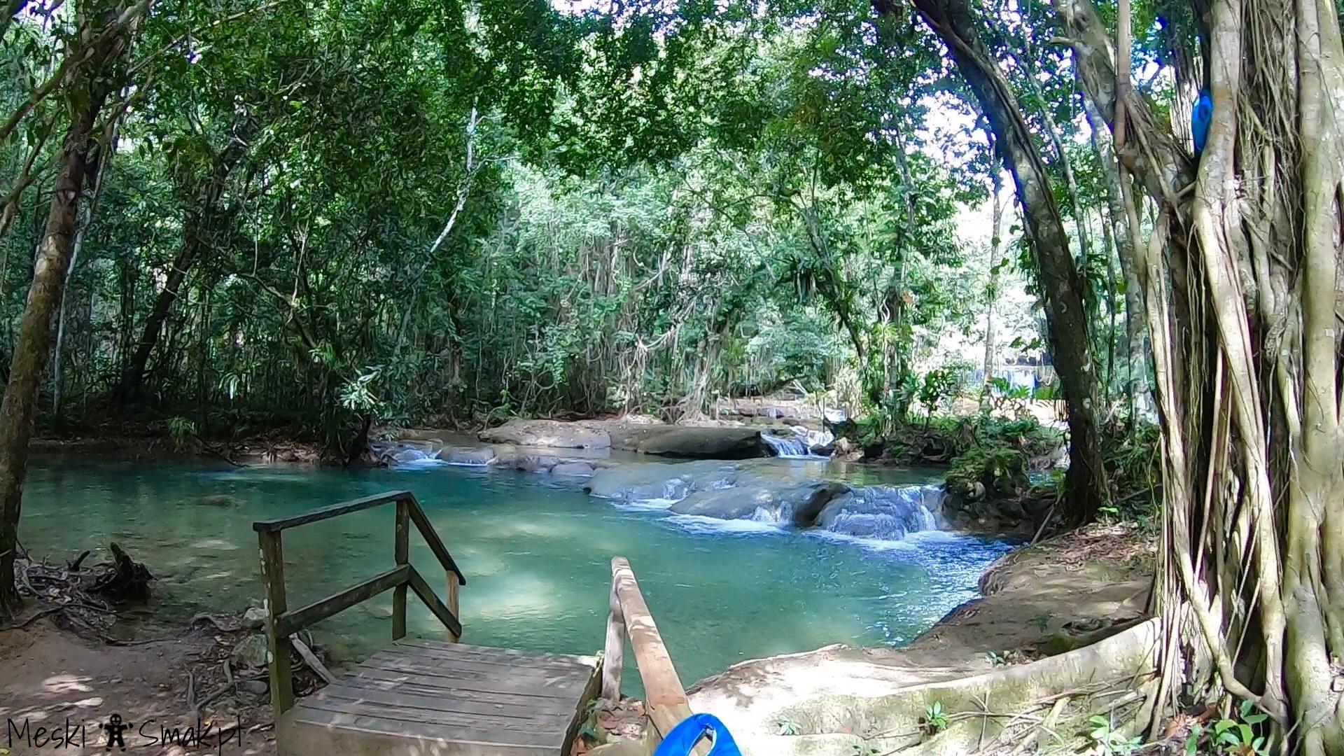 Wakacje i wycieczki Jamajka_wszystko o wodospady YS Falls 12