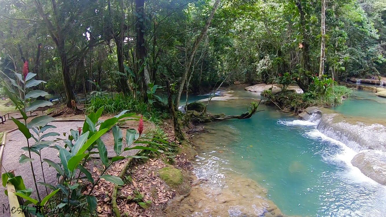 Wakacje i wycieczki Jamajka_wszystko o wodospady YS Falls 13