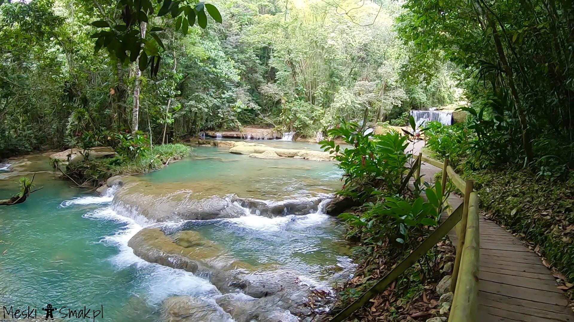 Wakacje i wycieczki Jamajka_wszystko o wodospady YS Falls 15