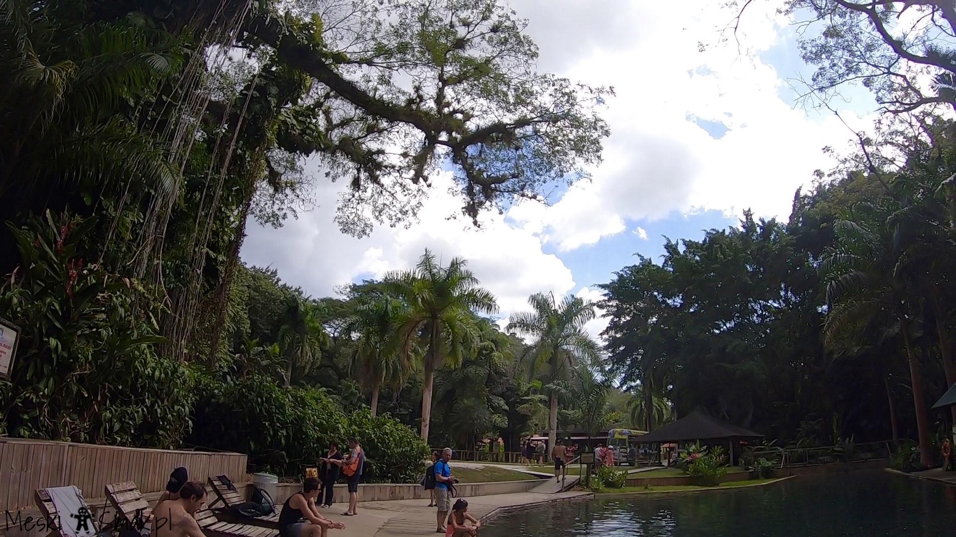 Wakacje i wycieczki Jamajka_wszystko o wodospady YS Falls 5