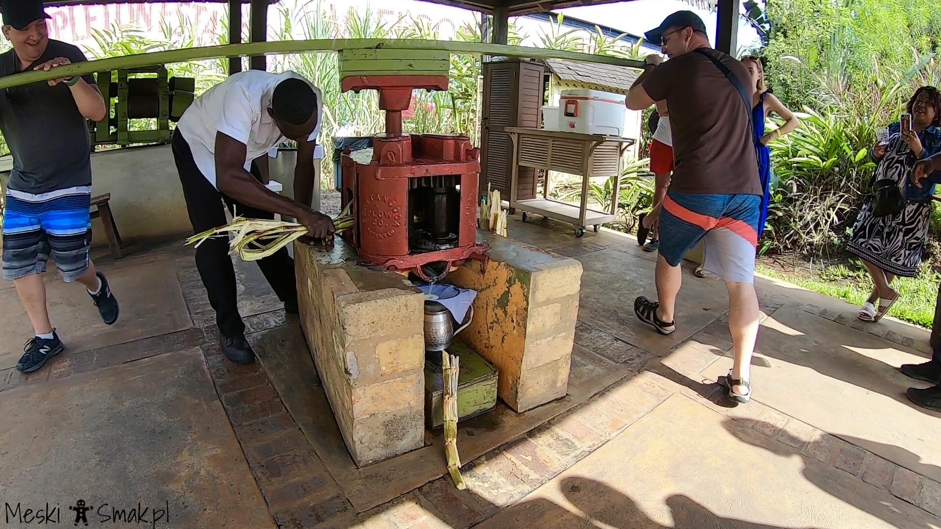 Wakacje i wycieczki Jamajka_wszystko o Fabryka Appleton Estate Rum 7